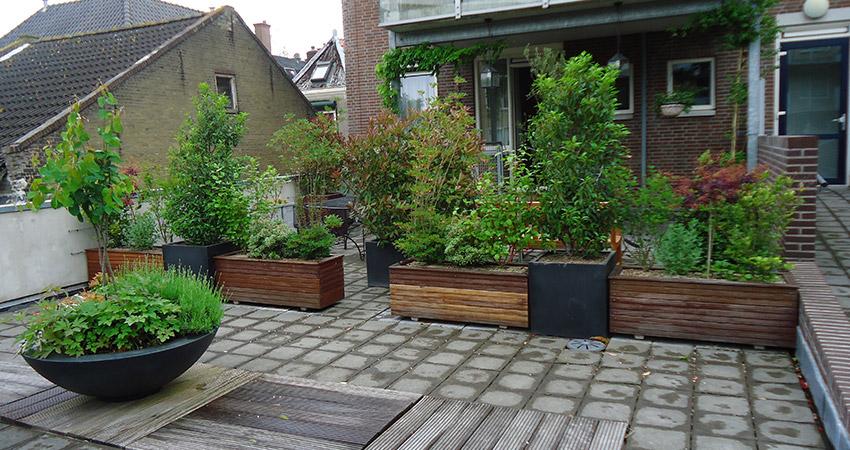 Dakterras/daktuin: Plantenbakken, composiet en Bangkiray