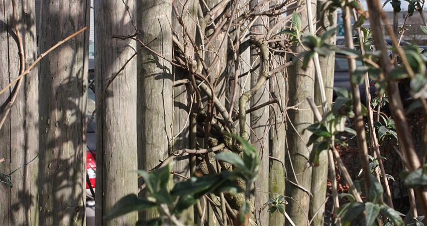 Erfafscheiding hoog: Rondpalen kastanjehout