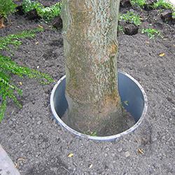 Grondkering: PVC ring t.b.v. bescherming boom tegen ophogen