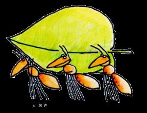 Mieren-blad