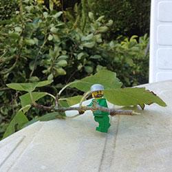 Lego-250x250pix-17